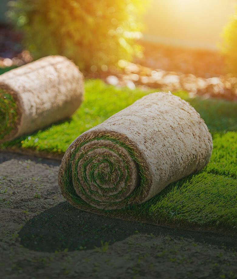 home_garden3_pic7