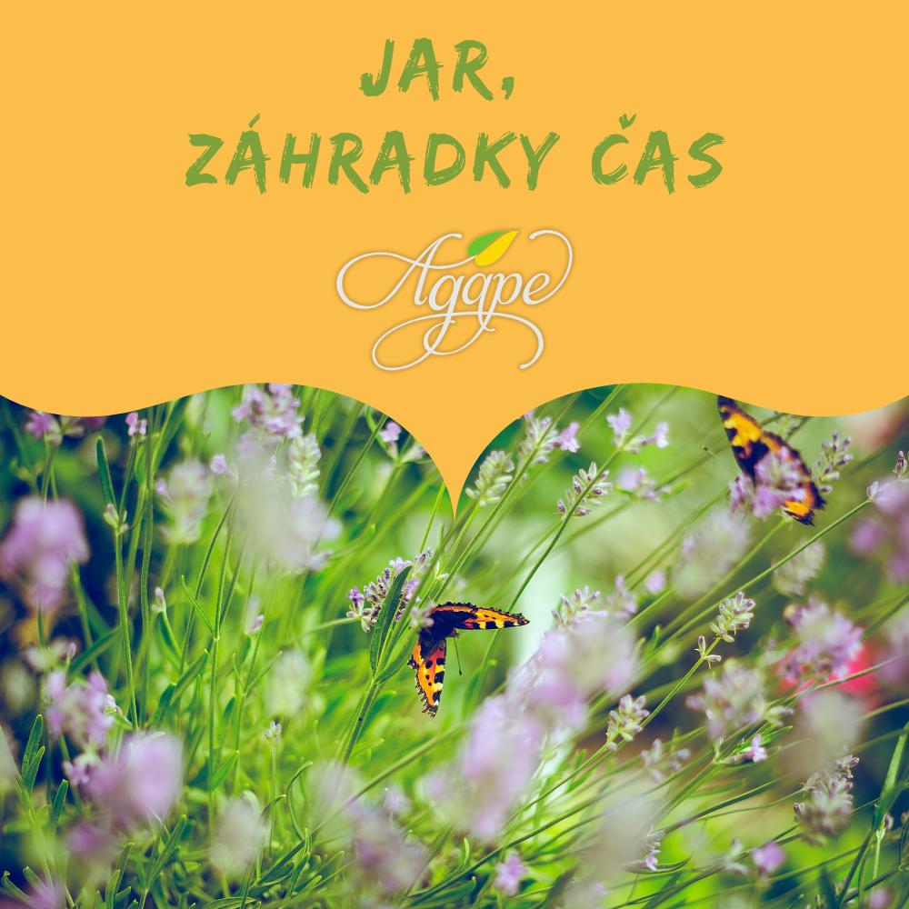 Jar, záhradky čas – kópia